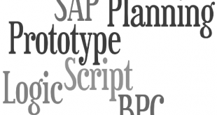 SAP BPC Planning Prototype with Logic Script
