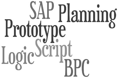SAP BPC Planning Prototype with Logic Script