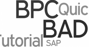 ABAP FICO - Part 2: Become a Beginner in ABAP