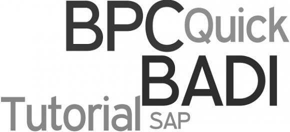 SAP BPC BADI - Quick Tutorial