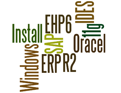 Install SAP IDES EHP6 on Windows 2008 R2 and Oracle