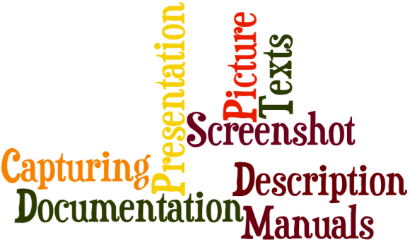 SAP Consultant Tool Greenshot